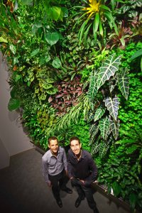 Chief green wall designers at Green over Grey - Living Walls and Design (Green Artist)