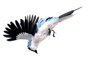 Great Grey Shrike. paper cut. 2012. Diana Beltrán Herrera. (photo courtesy of the artist.)