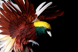 Greater Bird of Paradise.Diana Beltrán Herrera. (photo courtesy of the artist)